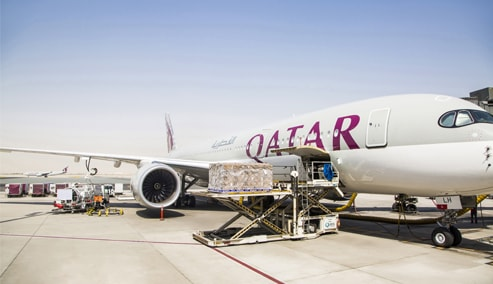Qatar Aviation Services